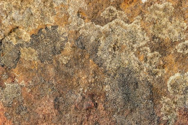 Textura da rocha. fundo de textura de pedra.
