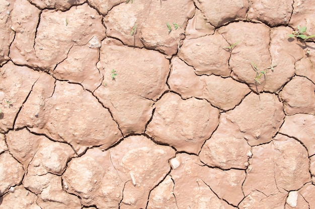 Textura da sujeira ou da terra crackled seca do solo durante a seca.