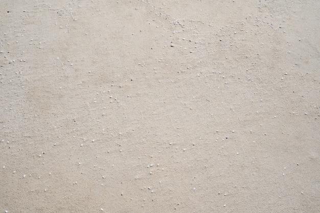 Textura de areia de praia com pequenas conchas na praia em dia ensolarado imagem para o fundo de viagens da natureza conceito de site de design de verão.