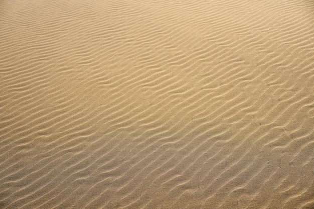 Textura de areia de praia de dunas na costa dorada