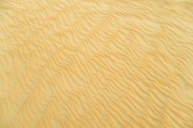 Textura de areia no deserto de ouro