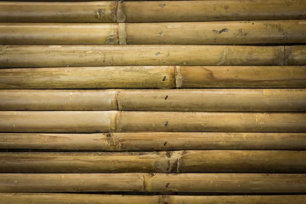 Textura de bambu amarela do fundo da cerca.