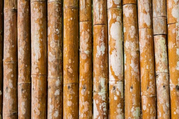 Textura de bambu da cerca da prancha do tom marrom velho para o fundo.