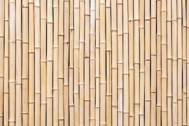 Textura de bambu marrom velha