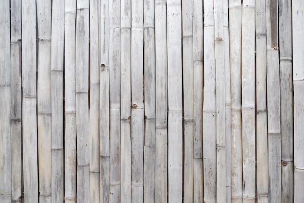 Textura de bambu
