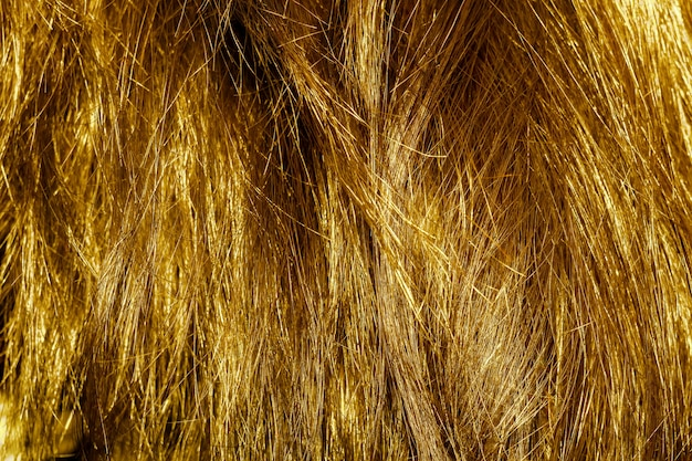 Textura de cabelo loiro