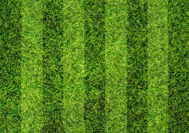 Textura de campo de futebol