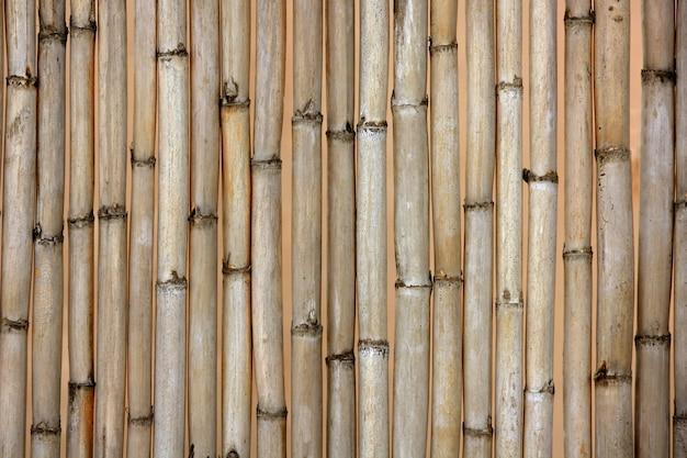 Textura de cana seca, típica do mediterrâneo