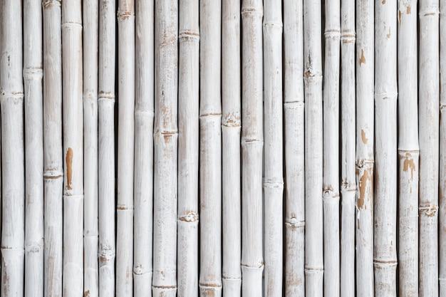 Textura de cerca de bambu