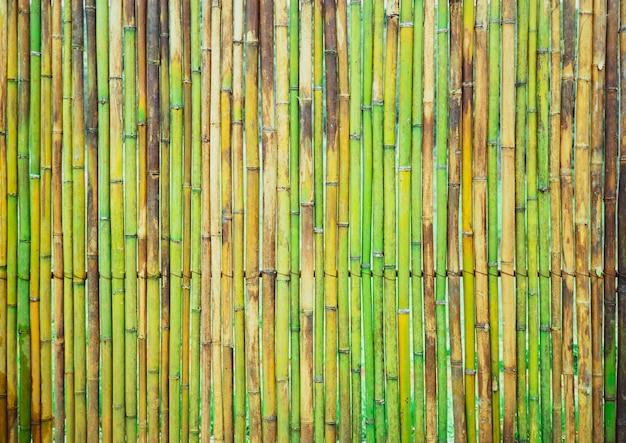 Textura de cerca de prancha de bambu verde fresco