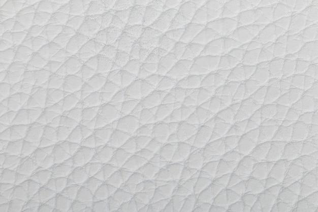 Textura de couro natural branco