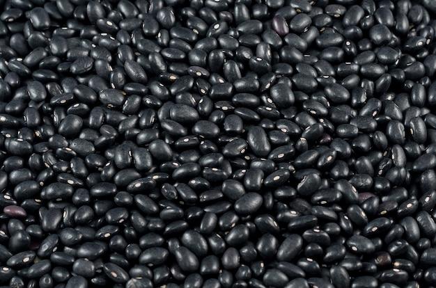 Textura de feijão preto cru