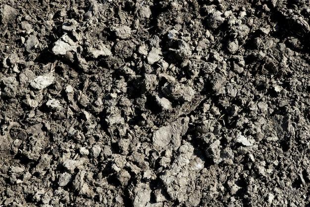 Textura de fertilizante orgânico de agricultura, plano de fundo