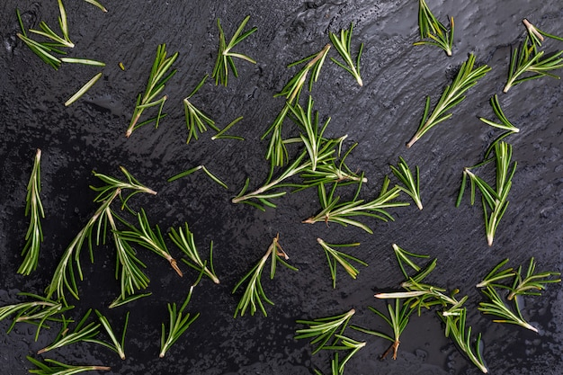 Textura de folhas de alecrim verdes recém cortadas (rosmarinus officinalis) .. ingrediente da cozinha mediterrânea e remédio caseiro de cura.