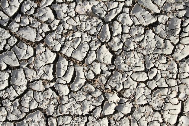 Textura de fundo cinza seco de terra rachada