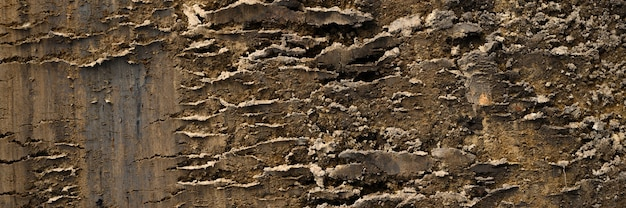 Textura de fundo da superfície solta do solo de areia e terra. vista do topo. bandeira