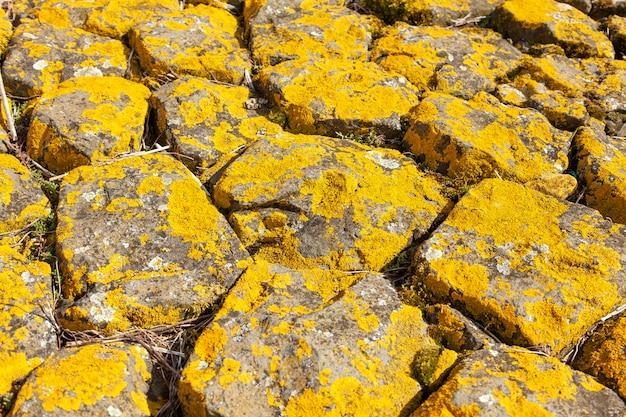 Textura de fundo de rocha amarela