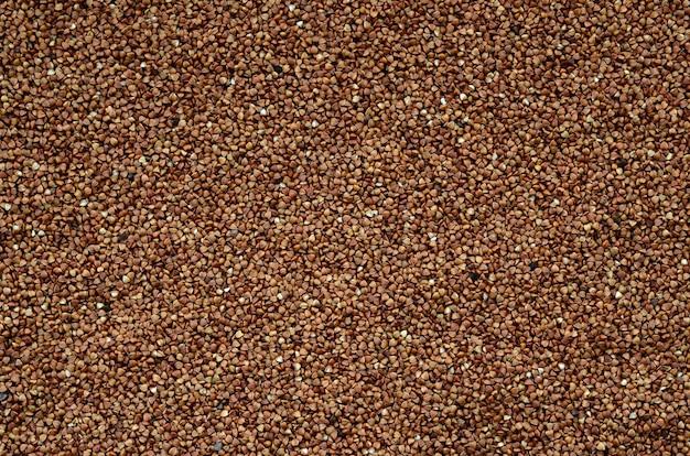 Textura de fundo de uma grande pilha de trigo mourisco