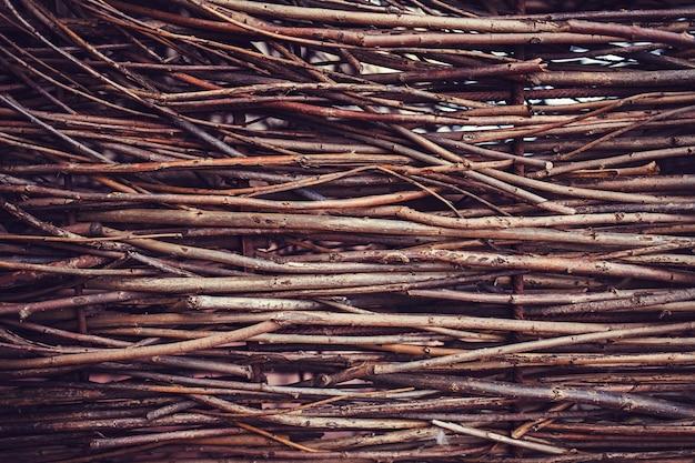Textura de galhos secos