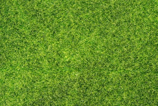Textura de grama