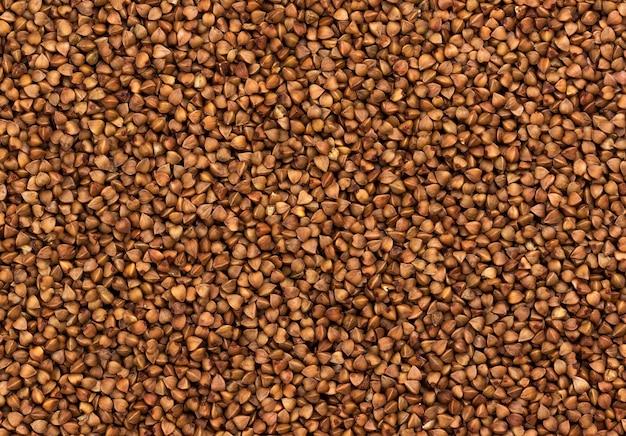 Textura de grãos de trigo mourisco