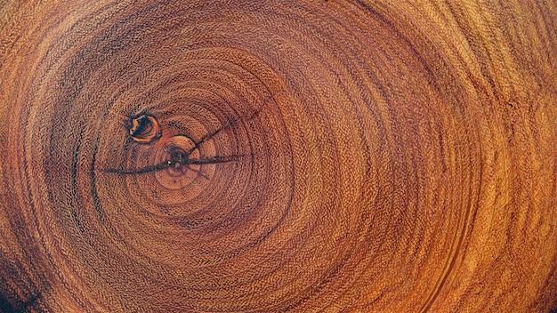 Textura de log de madeira natural