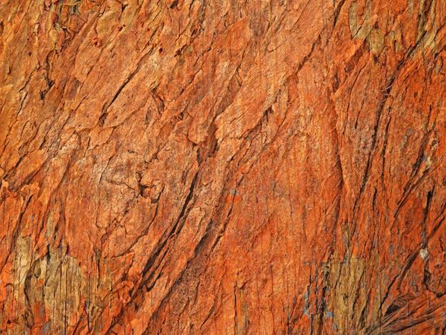 Textura de madeira ao ar livre Foto Premium