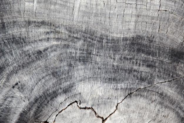 Textura de madeira cinza com algumas rachaduras acientes. fundo natural.