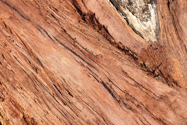 Textura de madeira com grãos