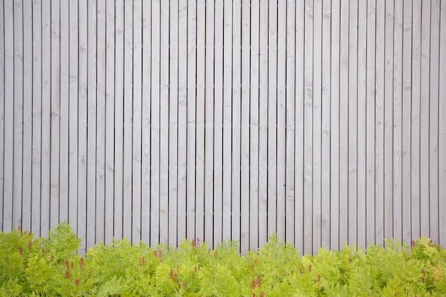 Textura de madeira com plantas para seu projeto