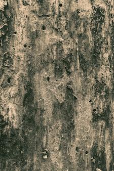 Textura de madeira da parede de madeira