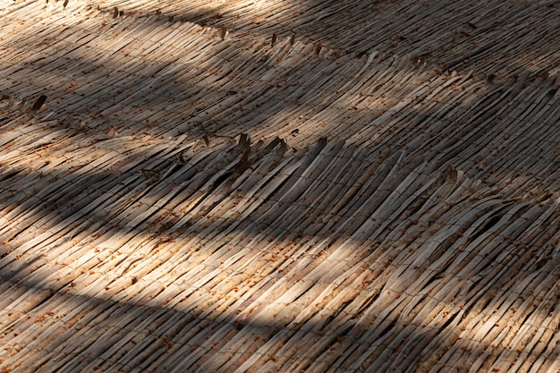 Textura de madeira de alto ângulo