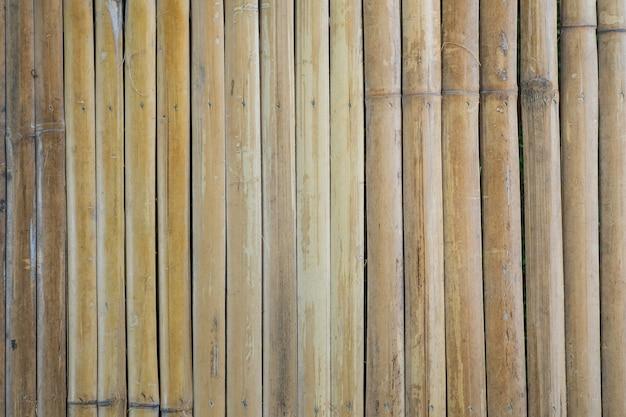 Textura de madeira de bambu com padrões naturais Foto Premium