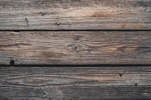 Textura de madeira de casca de árvore usada como parede natural