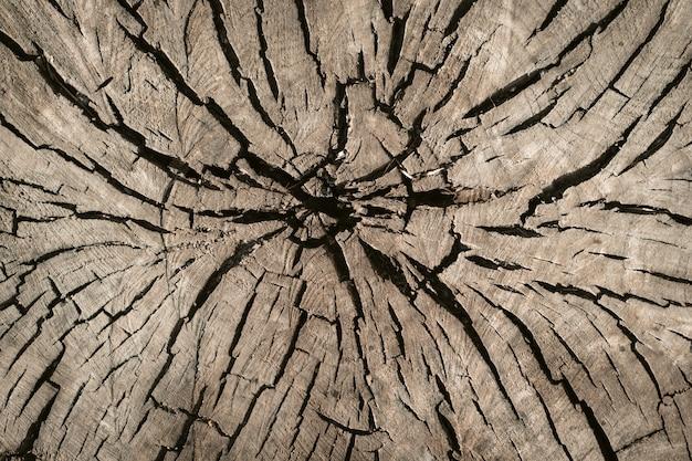 Textura de madeira envelhecida
