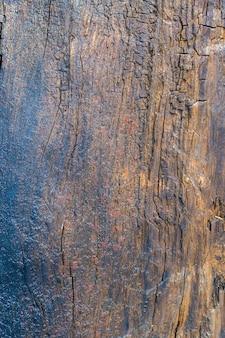 Textura de madeira molhada