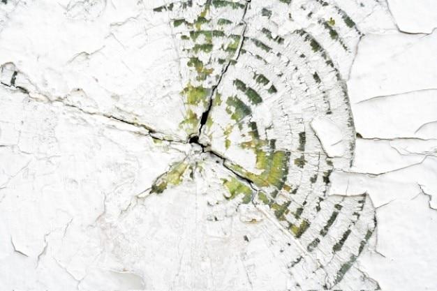 Textura de madeira rachada
