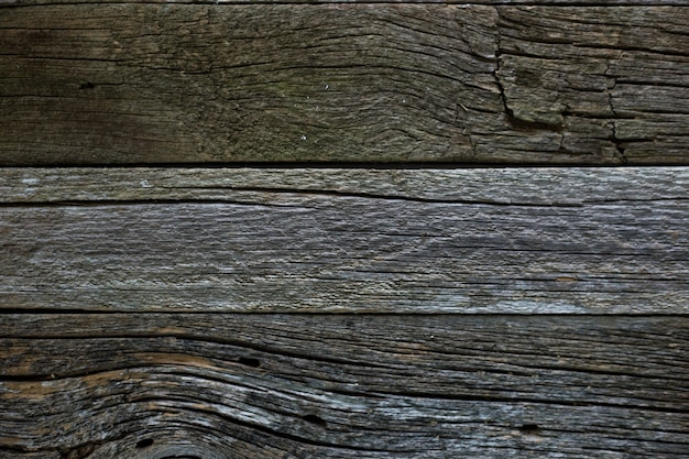 Textura de madeira textura de uma velha árvore de tabuleiro tábuas de fundo