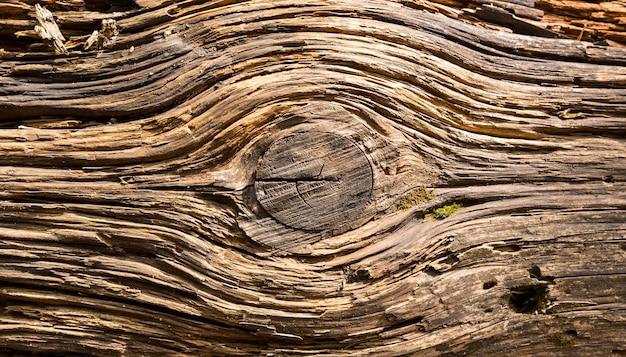 Textura de madeira velha, cores marrons