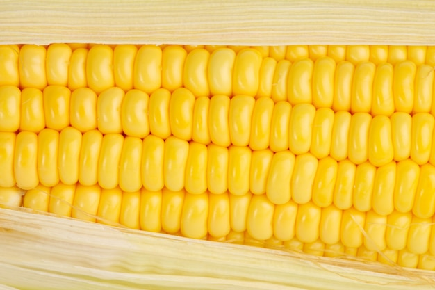 Textura de milho