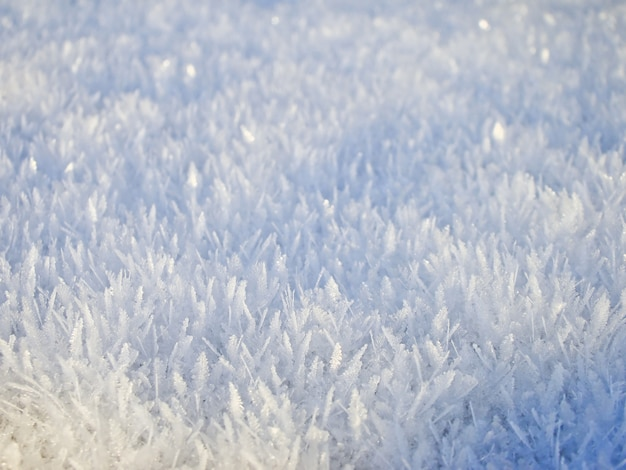 Textura de neve do inverno