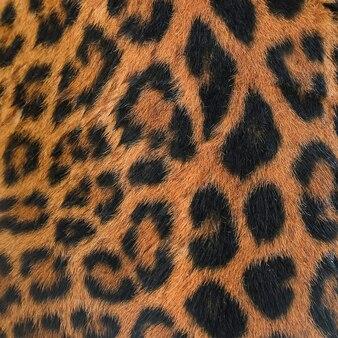 Textura de padrão de manchas de leopardo