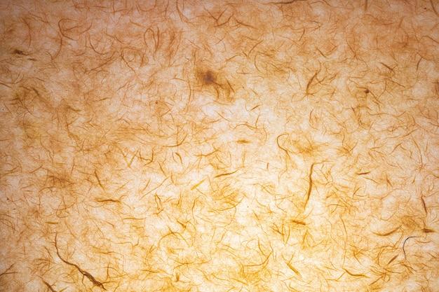Textura de papel feita à mão com fibras orgânicas visíveis.