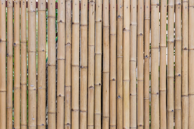 Textura de parede de bambu close-up