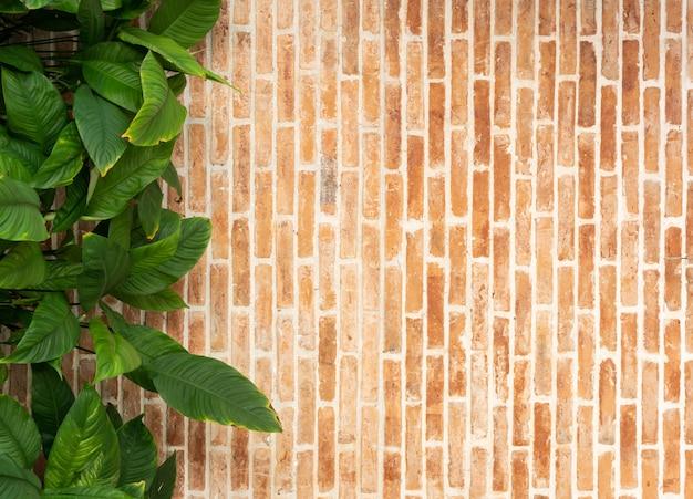 Textura de parede de tijolo vermelho com folhas verdes planta decoração, design de interiores retrô grunge