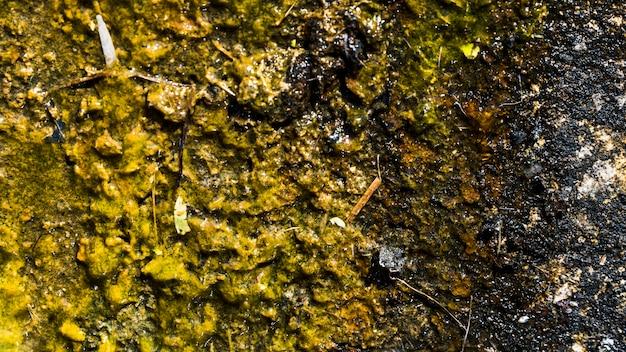 Textura de pedra da parede
