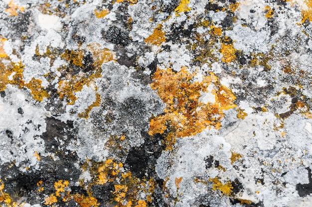 Textura de pedra natural colorida com musgo e granito.
