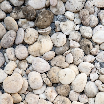 Textura de pedras de seixo branco