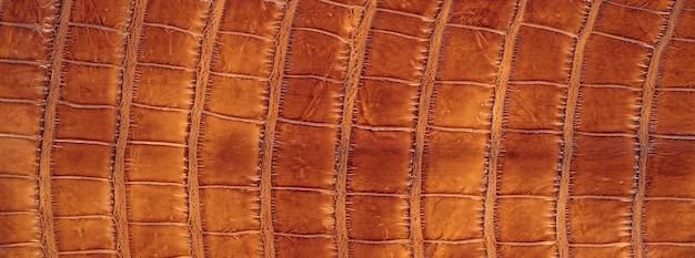 Textura de pele de crocodilo de cor laranja