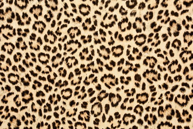 Textura de pele de leopardo